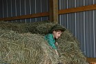Did someone say there is a needle in the haystack?